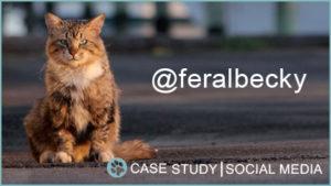 Case Study: @feralbecky