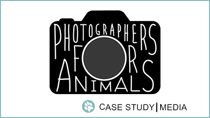 Case Study: Photographers for Animals