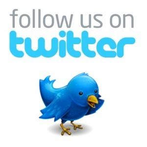 follow-us-on-twitter-bird-300x300