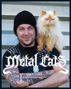 metalcats180