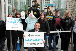 Paws-PR-Booked-Alley-Cat-Allies-on-CBS