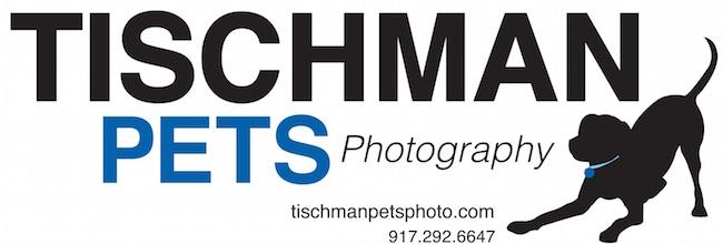 Tischman Pets Photography