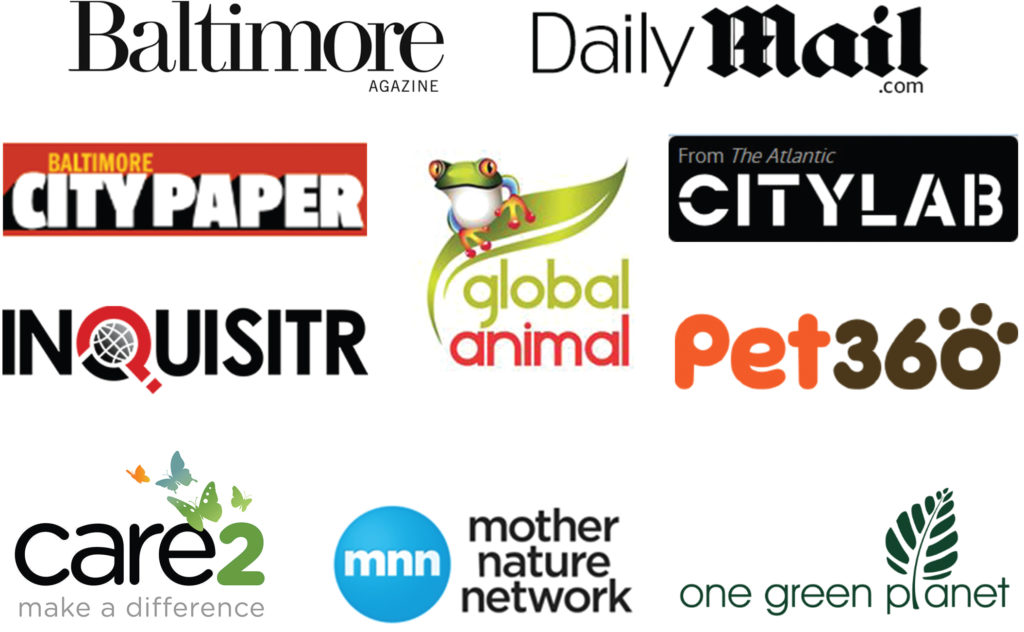 Media coverage outlets for Photographers for Animals