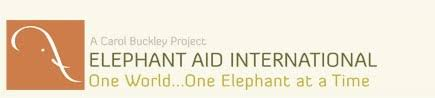 Elephant Aid International